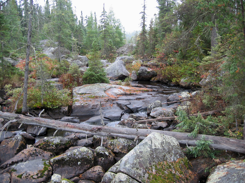 Tough Portage - Boreal Forest near Chapleau,  Ontario