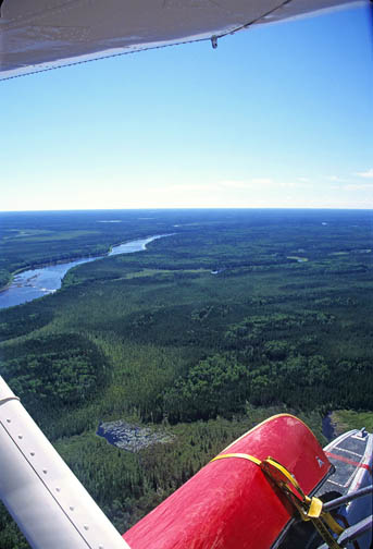 Airborne Over The Boreal Forest